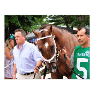 Mr. Z in the 100th Sanford Stakes Photo