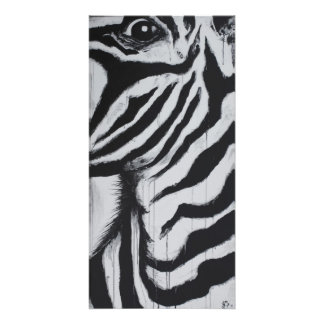Mr. Zebra Wildlife African Plains Original Art Photographic Print