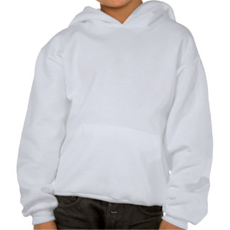 Music 55 hooded pullovers