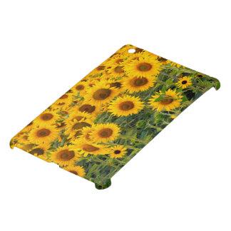 Na, USA, Colorado, Sunflowers iPad Mini Cases