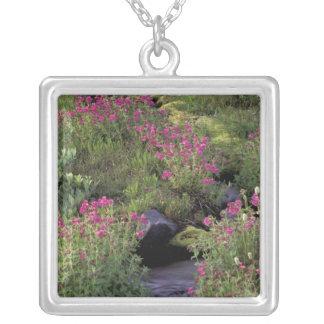NA, USA, Washington, Mt. Rainier NP, Pink Square Pendant Necklace