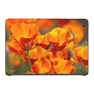 North America, USA, Washington, Seattle iPad Mini Cover