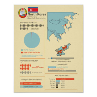 North Korea Infographic Poster
