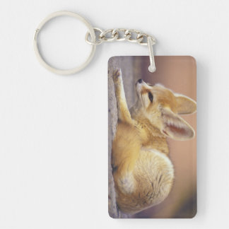 Northern Africa. Fennec Fennecus zerda) Double-Sided Rectangular Acrylic Key Ring