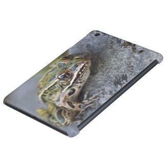 Northern Leopard frog, See-through Island, iPad Mini Case