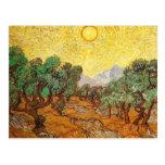 Olive Trees Yellow Sky & Sun Van Gogh Fine Art Postcard