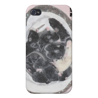 One Bad Apple iPhone 4/4S Cover