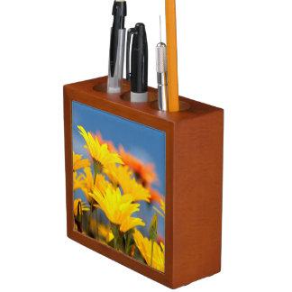 Orange And Yellow Namaqualand Daisies Desk Organiser