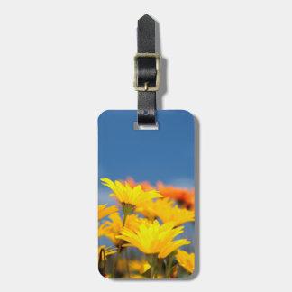 Orange And Yellow Namaqualand Daisies Travel Bag Tag