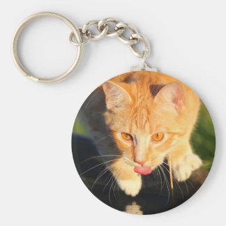 Orange thirsty cat basic round button key ring