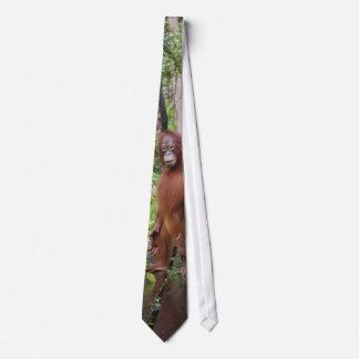 Orangutan Wildlife Fan Club Tie