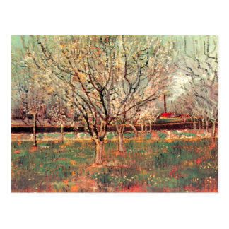 Orchard in Blossom Plum Trees by Vincent van Gogh Postcard