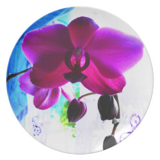 Orchid Plate, Hot pink and turquoise Plates