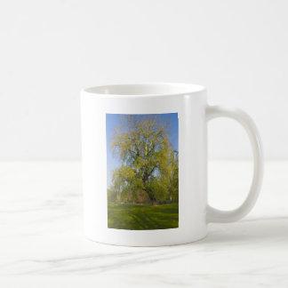 park in autumn basic white mug