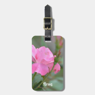 Pastel Pink Rose in Iraq Bag Tags