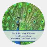 Peacock Address Labels Round Sticker