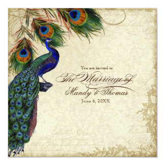 Peacock & Feathers Formal Wedding Tea Stained 13 Cm X 13 Cm Square Invitation Card