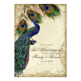 Peacock & Feathers Formal Wedding Tea Stained 13 Cm X 18 Cm Invitation Card