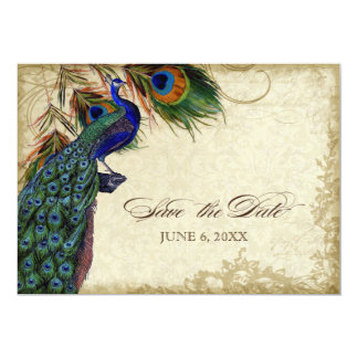 Peacock & Feathers Save the Date Tea Stained 13 Cm X 18 Cm Invitation Card