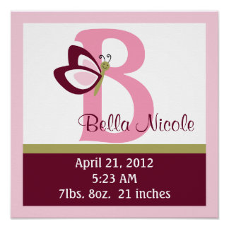 Personalized Raspberry Butterfly Birth Info Poster