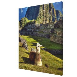 Peru, Andes, Andes Mountains, Machu Picchu, Canvas Print