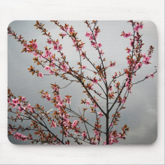Pink tree flowers mouse pad