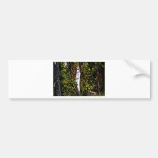 Plain White Tree Bumper Sticker