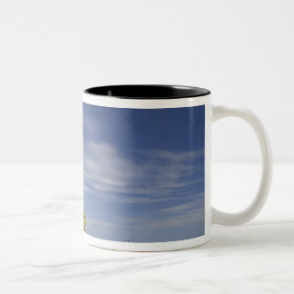 Plantation Island Resort, Malolo Lailai Island 4 Two-Tone Mug