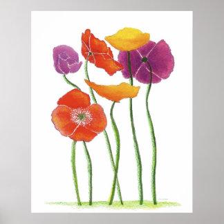 Plentiful Poppies Poster