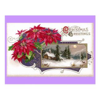 Poinsettias and Moonlit Night Vintage Christmas Postcard
