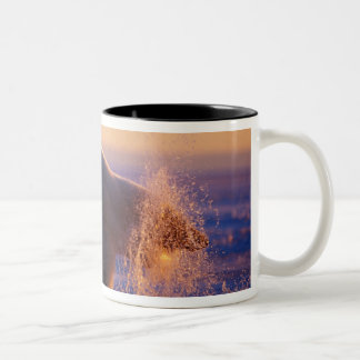 Polar bear pulling its head out of a hole in the Two-Tone mug