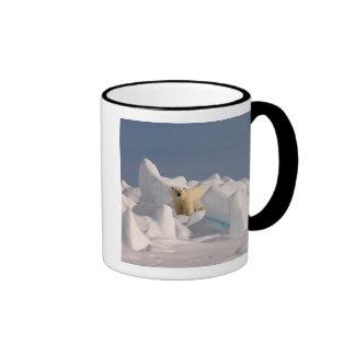 polar bear, Ursus maritimus, in rough ice on 2 Ringer Mug