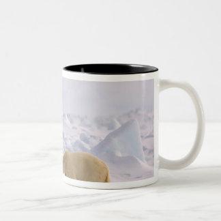 polar bear, Ursus maritimus, pair in rough ice Two-Tone Mug