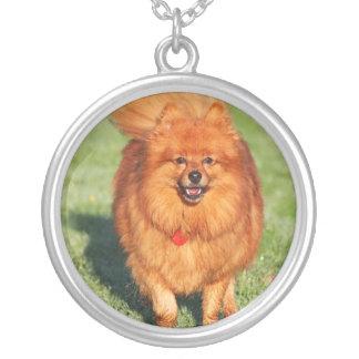 Pomeranian dog necklace, gift idea round pendant necklace