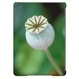 Poppy Flower Head Seed, Western Cape iPad Air Cases