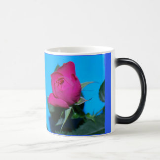 Pretty Pink Rose Morphing Mug