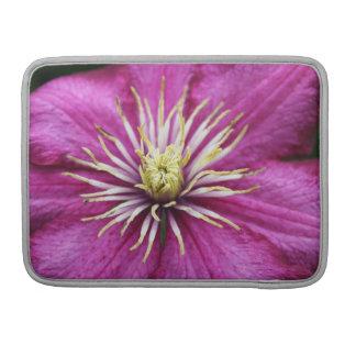 Purple Clematis flower in bloom during Spring MacBook Pro Sleeve
