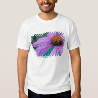 Purple Cone flower with water drops Tee Shirt
