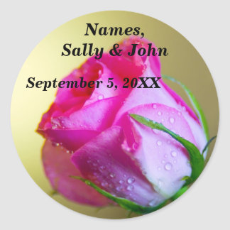 Rain Drop Kisses of Nature on Pink Rose Round Sticker
