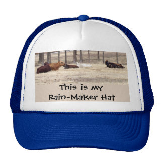 Rain-maker (Cows are lying down) Cap