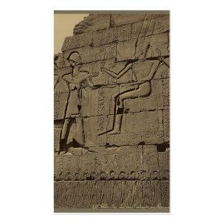 Ramusseum. Egypt circa 1867 Pack Of Standard Business Cards