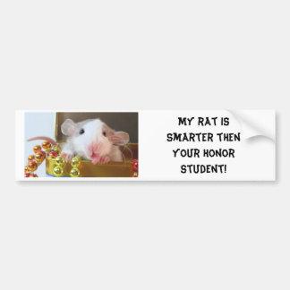 Rat Honor Student Bumper Sticker