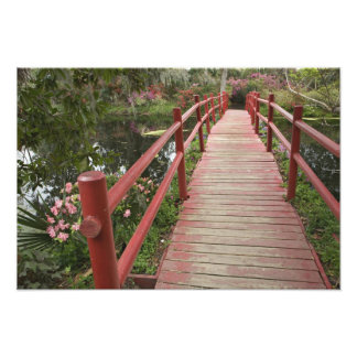 Red bridge over pond, Magnolia Plantation, Photograph