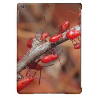 Red Bugs (Pyrrhocoridea) Feeding. Kruger iPad Air Case