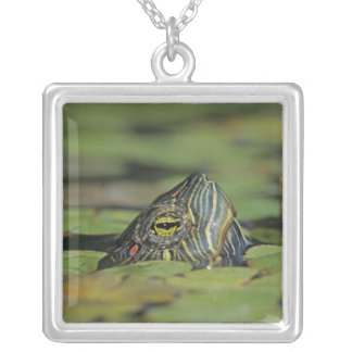 Red-eared Slider, Trachemys scripta elegans, Square Pendant Necklace