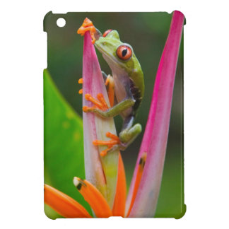 Red-eye tree frog, Costa Rica 2 Case For The iPad Mini