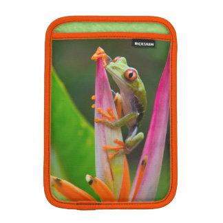 Red-eye tree frog, Costa Rica 2 iPad Mini Sleeves