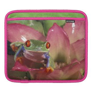 Red-eyed tree frog Agalychnis callidryas) iPad Sleeve