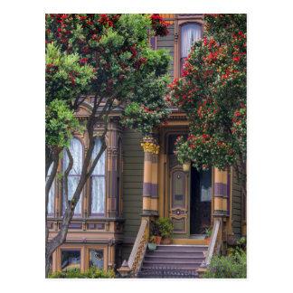 Red Flowering Gum Tree Frames Victorian Style Postcard