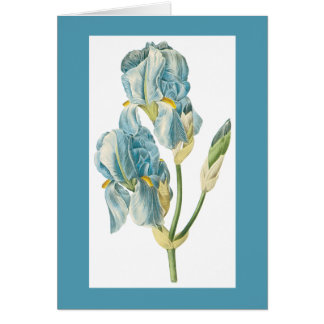Redoute Iris Notecard Note Card